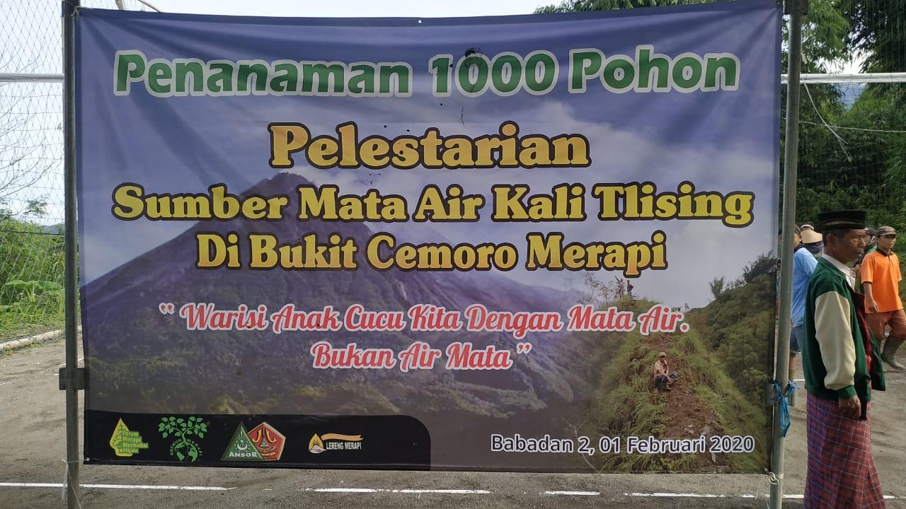 Image : Penanaman 1000 Pohon